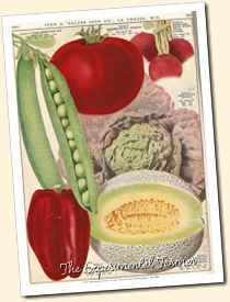 Salzer veggies