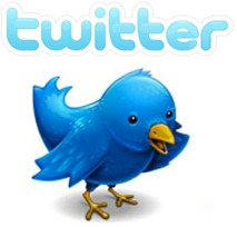 Twitter-Big-Bird