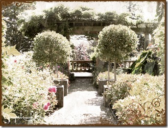 italian-garden-6