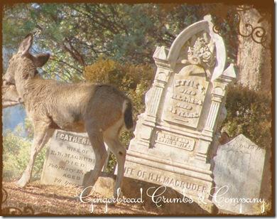 deer-ettie