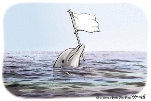 Gulf-Surrender
