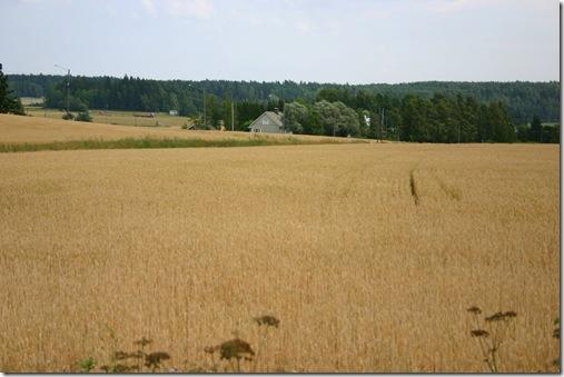 finland 361cop