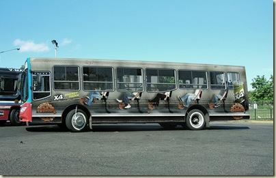 Peinture sur bus-9
