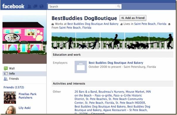 Facebook nouveaux profils créatifs-5