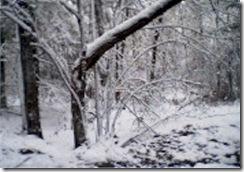snow2edit