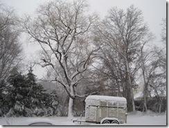 2010 blizzard 2