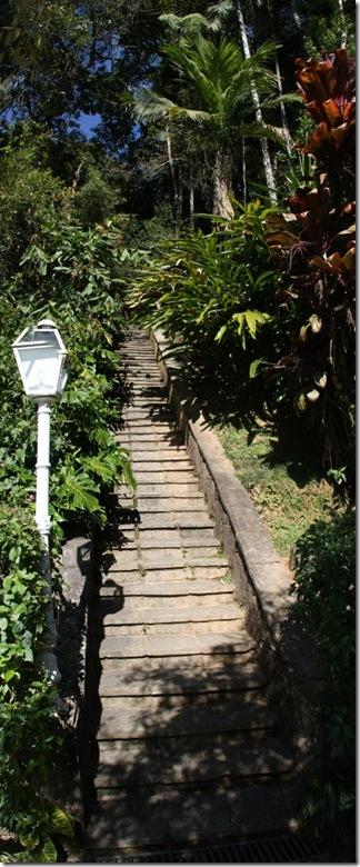 escada terê 6022 (2) (421x1024)