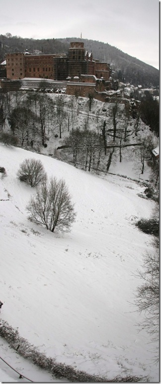 castle snowy vert_4477 Panorama (534x1280)
