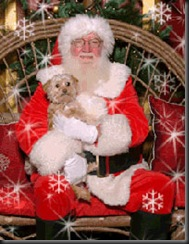 Dog-with-Santa_321114425_std