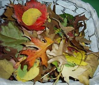 leaf guys (7)