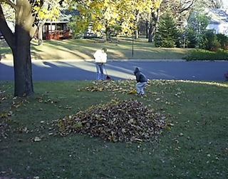 helping rake leaves