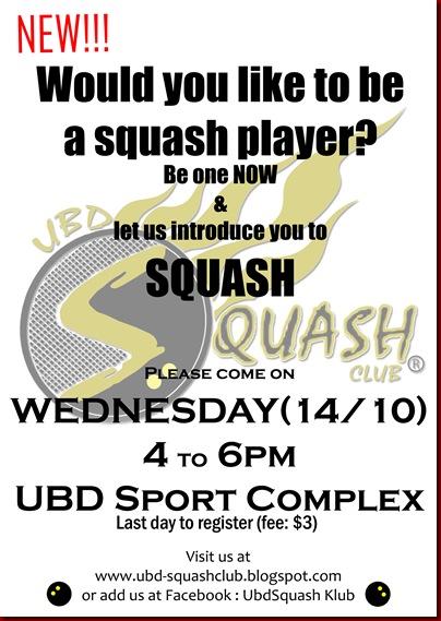 squash poster 4