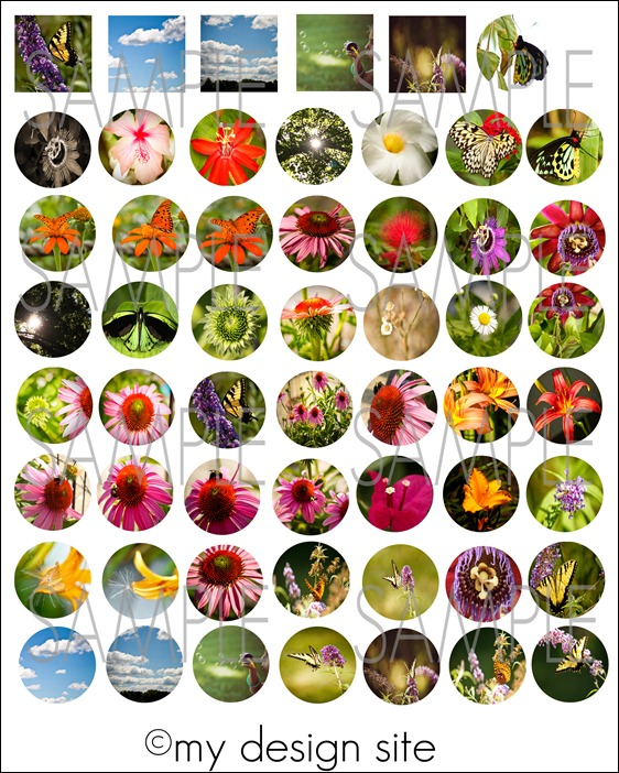 Nature-Graphic-Sheet2-SAMPL