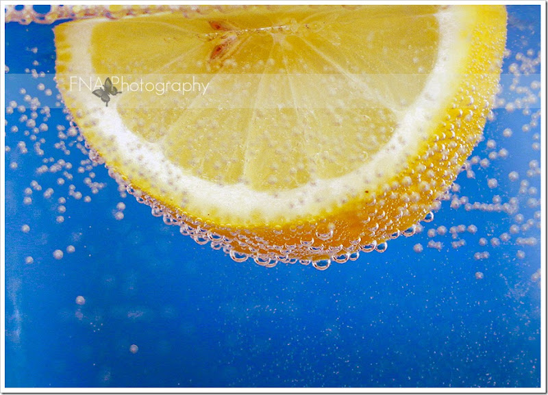 lemon-16