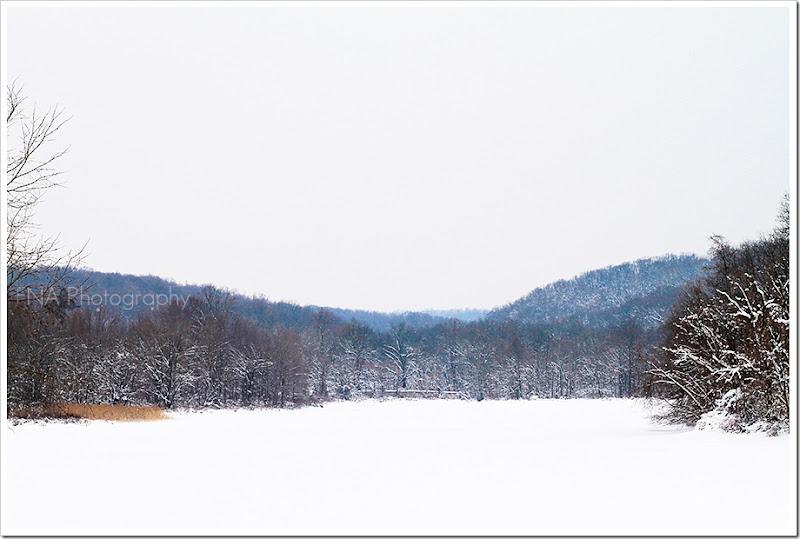 Snowlake1