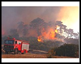 FIRES.DEC.2010
