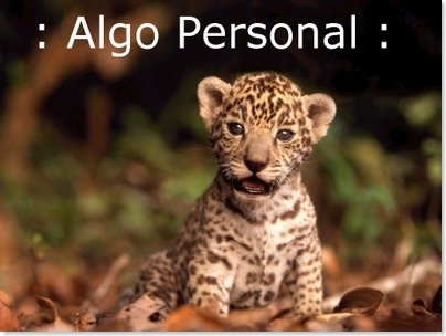ALGO PERSONAL 04