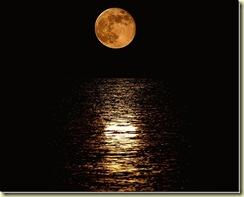 FC full moon_thumb[1]