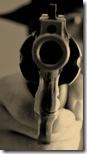 gun 2