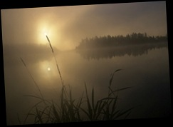 misty_morning_churchill
