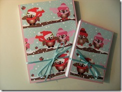 Covered_Notebooks_Pink_Owls