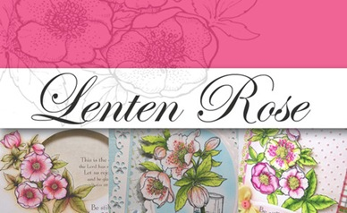 Lenten Rose Graphic