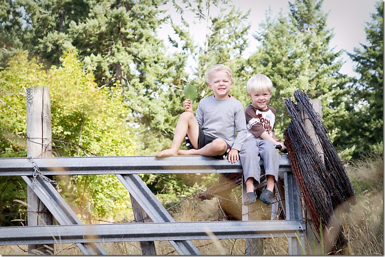 Sep-14-2010_fence2September