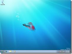 0001-FullDesktop