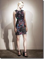 Erdem Pre-Spring 2011 Printed Dresses Look 13