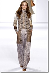 Chloé Ready-To-Wear Fall 2011 Runway Photos 7