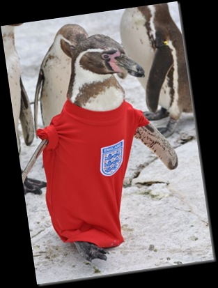 Dippy leads the England team onto the pitch