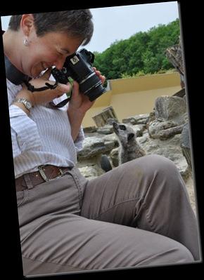 Rachel photographing Meerkat DSC_0645