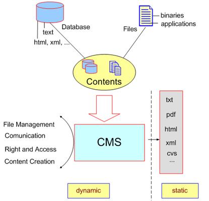 แสดงการเปรียบเทียบระหว่าง Static Web และ Dynamic Web Site