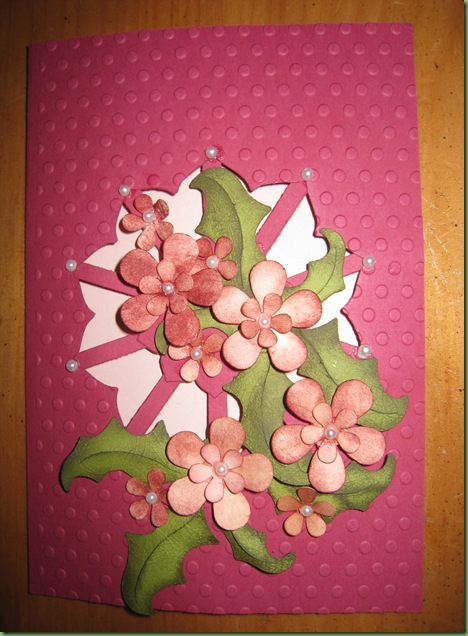 Feb 16 2011 cards & flowers 046