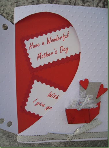 Feb 16 2011 cards & flowers 006