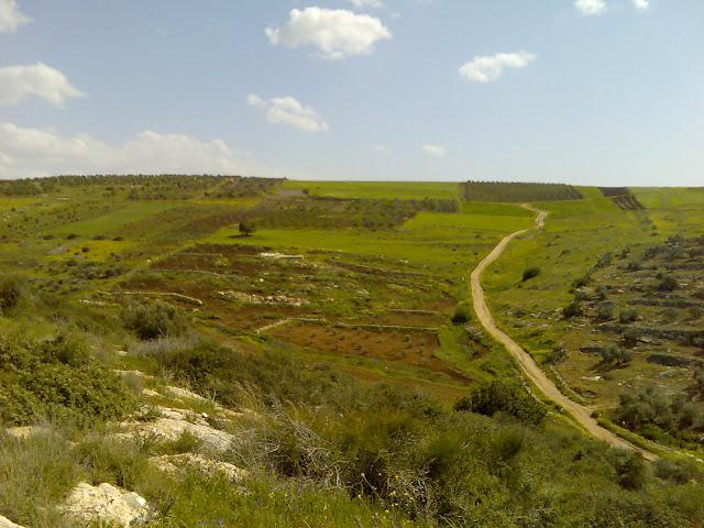 صور من منطقة ظهر 3aLa2011