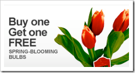 Home Depot BOGO Spring Blooming Bulbs
