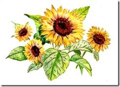 SunflowerBouquet2