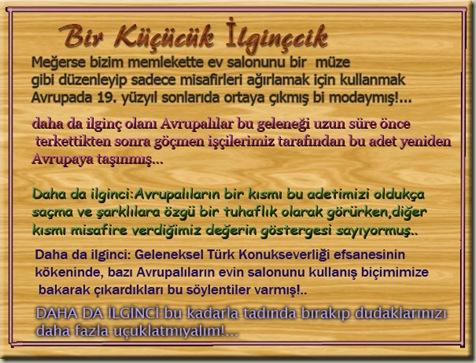 bir_kucucuk_illginccik