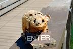 Jackson Hole, Wyoming,Park City, Canyonlands,Utah Slideshow