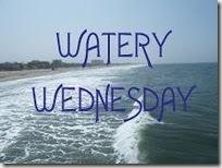 WateryWed2b