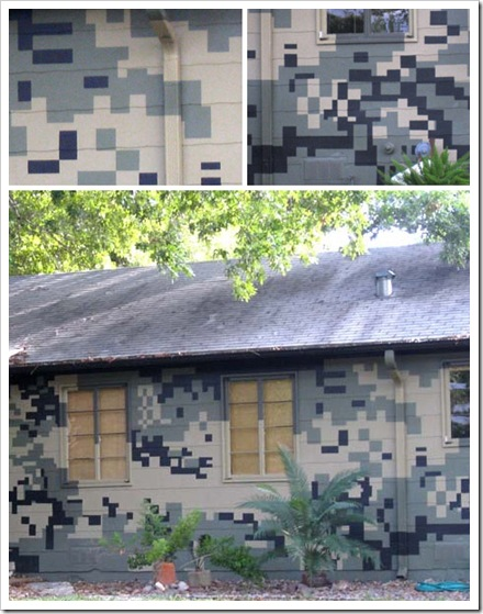 painted-camouflage-green-house