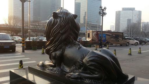 Lion for lufthansa