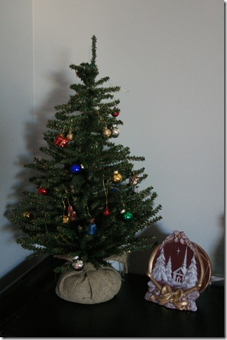 December 2010 064