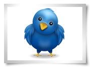 Meu nome é Twitter!