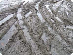 dailiness.com mud