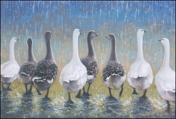 quacking_in_the_rain
