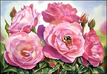 hannes rose