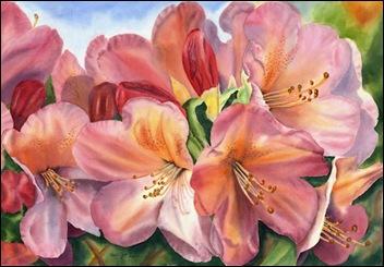 rhododendron-rhapsody