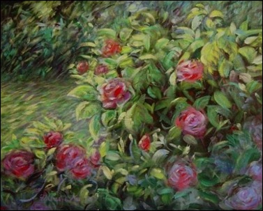 rose garden by Natalie M. Ko